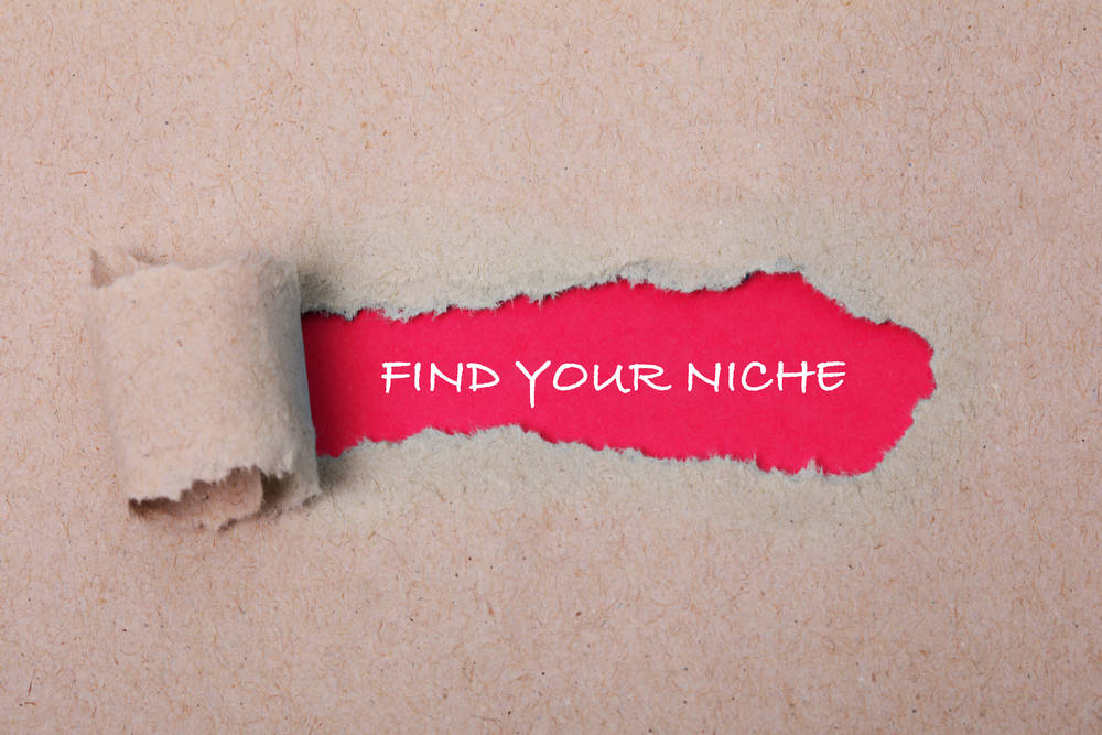 "Paper torn to reveal a red background which says ""find your niche""."