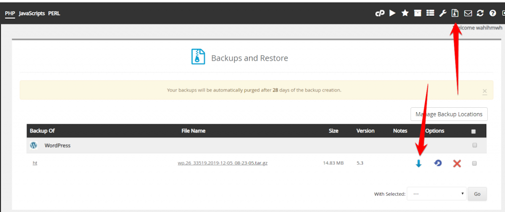 Restore the WordPress Backup from cPanel